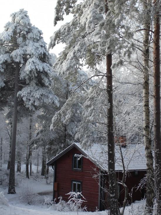 Vinter över S:t Dominicus